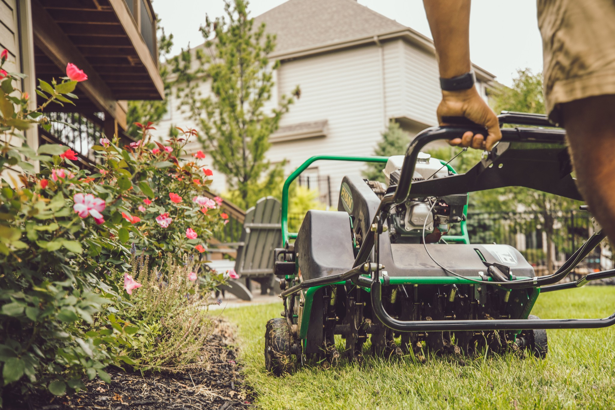 lawn aeration and overseeding